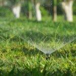 The Best Pop Up Sprinklers In Australia
