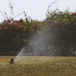 The Best Sprinklers in Australia