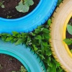 How to Use Tyre Planters in Your Garden
